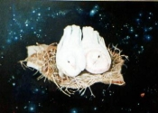 doves-in-space